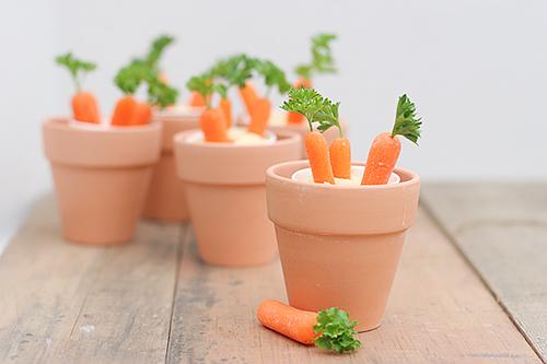 Cách trồng cà rốt tại nhà trong chậu