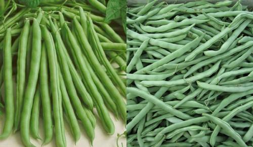 Những loại rau được phun nhiều thuốc trừ sâu nhất - 1