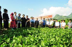 Nhà nước ưu đãi và hỗ trợ cho doanh nghiệp đầu tư vào nông nghiệp