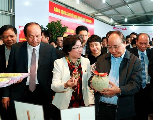 Đề án thí điểm tích tụ đất đai đầu tư vào nông nghiệp tạiHà Nam và Thái Bình