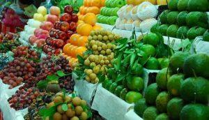 Nông nghiệp Việt Nam phải tiến tới một nền nông nghiệp hiện đại với công nghệ mới