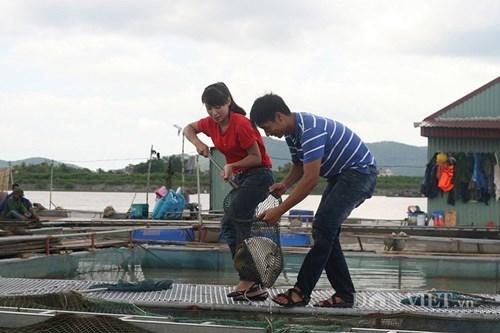 Vua cá giòn thành tỷ phú ở tuổi 27 của chàng trai Hải Dương