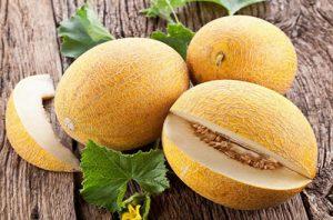 Áp dụng đúng quy trình kĩ thuật chăm sóc sẽ đem lại những trái dưa lưới thơm ngon