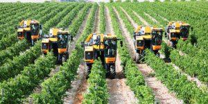 Cải tổ chính sách về nông nghiệp