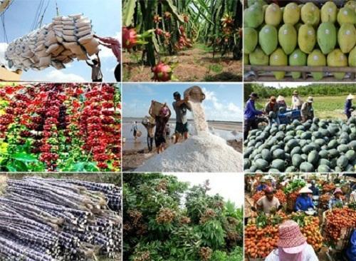 Nông nghiệp 6 tháng đầu năm tăng trưởng âm