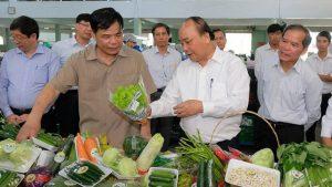 Làm gì để nâng cao giá trị nông sản Việt Nam sản xuất toàn cầu